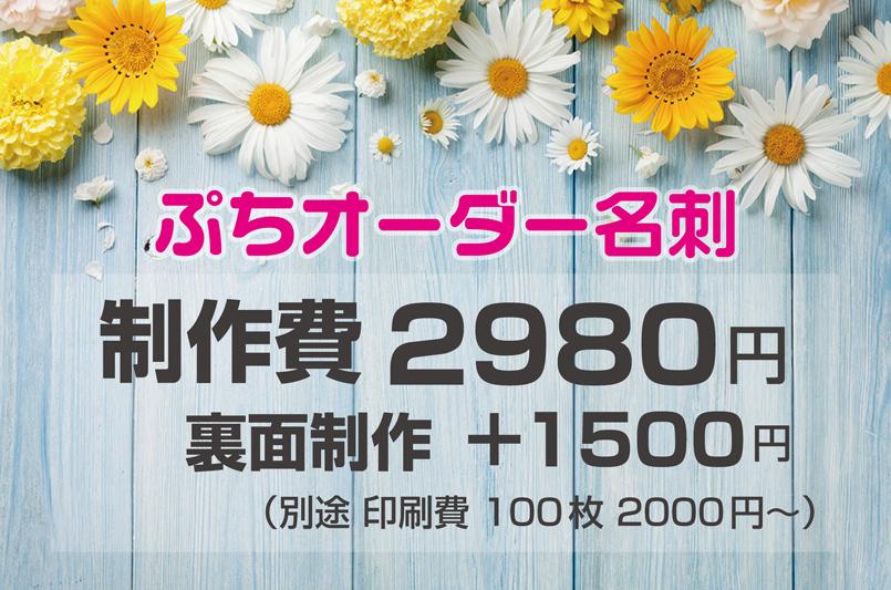 ぷちオーダー名刺の価格表
