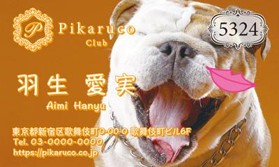 犬・猫・動物のサムネイル名刺